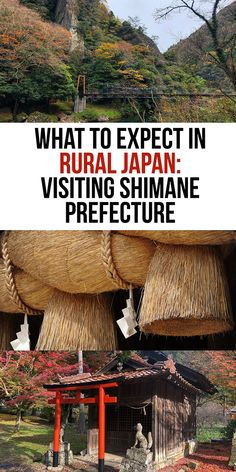 Visiting Rural Japan Countryside: What is it like - Thanks for the Meal - Pin To Travel New Travel, Travel Goals, Asia Travel, Bangkok Travel, Croatia Travel, Nightlife Travel, Bangkok Thailand, Travel Packing, Hawaii Travel