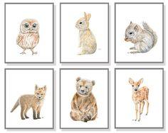 Woodland Nursery Art Animal Painting Baby Animal Prints Forest Watercolor Children Room Bear Cub Deer Fox Bunny Rabbit Owl Squirrel Set of 6