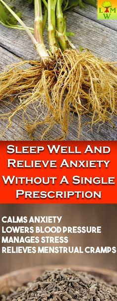 If you suffer from insomnia and anxiety, you will be very happy to find out that there is an incredibly effective and natural way to ease this condition.