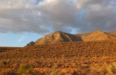 Into the real wild : Tankwa Karoo - One Footprint On The World Parc National, National Parks, Nature Reserve, Campsite, Footprint, Conservation, Monument Valley, South Africa, Landscapes
