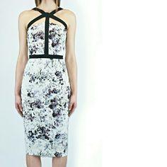 1 DAY SALE Cushnie et Ochs Floral Dress See comments for description. FITS MORE LIKE A US 4-6. Cushnie et Ochs Dresses