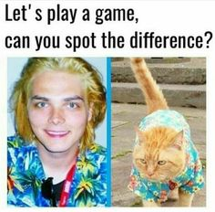 The both are cute, bit one is a sassy, so.... Yes, I chose Gee!
