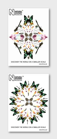 Natural History Museum Posters designed by Alex S