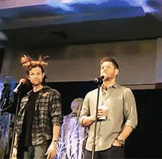 The moose attacks