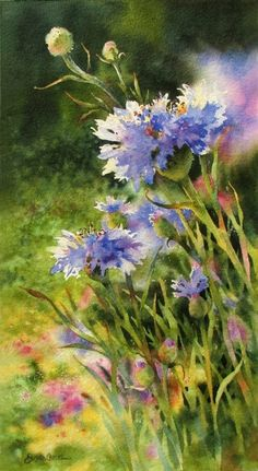 """Bachelor Buttons - """"Field of Dreams"""" - watercolor painting - By Susan Crouch Painting & Drawing, Watercolour Painting, Watercolor Flowers, Drawing Flowers, Painting Flowers, Watercolor Water, Art Et Illustration, Arte Floral, Beautiful Paintings"""