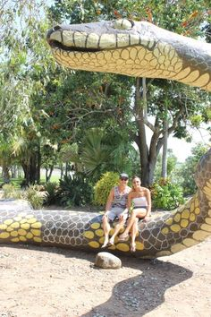 """See 10 photos and 2 tips from 33 visitors to Chill Parlour. """"It's worth driving from Townsville to Ayr for the coffee, food and lovely service at. Vacation Places, Vacation Memories, Aussie Australia, Unusual Buildings, Rock Pools, Outdoor Sculpture, Roadside Attractions, Cool Countries, Sunshine State"""