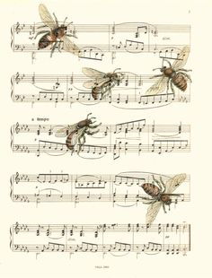 Bee Sheet Music Art Print On An Upcycled Music Shee Sheet Music Art Print, Bee Art, Bees, Vintage Bees Illustration Print, 112 Sheet Music Art, Vintage Sheet Music, Vintage Sheets, Music Sheets, Éphémères Vintage, Vintage Paper, Bee Art, Partition, Antique Books