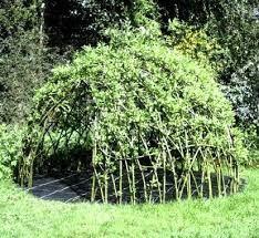 Bildresultat för willow building