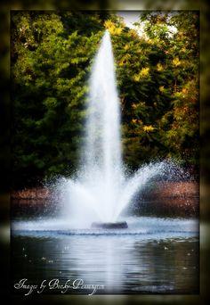 fountain  - Centennial Park Nashville, TN