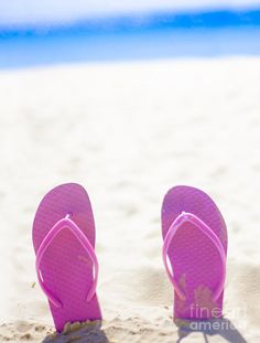 Pink Thongs Or Flip Flops Buried Heel Up In The Sand Of A Lush Beach Landscape With Text Copyspace Above by Ryan Jorgensen