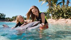 6 places to swim with Dolphins: Need to remember this when planning for future vacation.