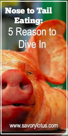 Nose to Tail Eating: 5 Reasons to Dive in -  savorylotus.com #meat #local #paleo