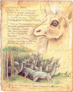 A young unicorn. From Magnalucius's Unicornis notebook