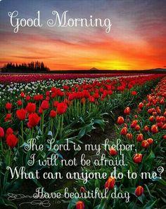 Good morning. Hebrews13:6