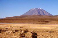 Полезная информация о Латинской Америке: Перу, джунгли, сельва, амазония, шаманизм, путешествия в Южную Америку