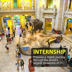 INTERNSHIP APPLICATIONS CLOSING SOON!  The archives at the Smithsonian museums have fascinated generations for their treasures of information and knowledge. The developed world considers Smithsonian institutions as an absolute, for experiential learning for individuals and communities at large.   But what about the unfortunates who cannot afford the travel?  Educational foundations aiming to disperse this wealth of information, invites passionate individuals with journalism, language…