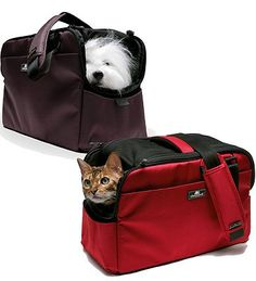 Small pets travel in comfort and style in the Sleepypod Atom Pet Carrier.