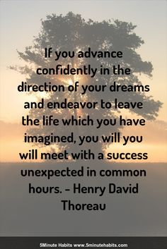 If you advance confidently in the direction of your dreams and endeavor to leave the life which you have imagined, you will you will meet with a success unexpected in common hours. - Henry David Thoreau 5minutehabits.com