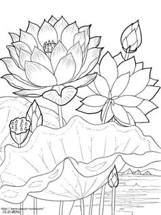 Gallery.ru / Фото #11 - рисунки цветов - ninmix Printable Flower Coloring Pages, Colouring Pages, Coloring Books, Pichwai Paintings, Indian Art Paintings, Lotus Painting, Fabric Painting, Kerala Mural Painting, Botanical Art