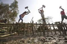 Villagers rebuild an embankment after it got washed away by a tidal wave caused by cyclone Aila in Sundarbans delta, southeast of Kolkata in 2009. Credit: Parth Sanyal/Reuters Water Swirl, Losing A Parent, How Are Things, Weather Storm, High Fever, Borrow Money, Small Ponds, Water Me, Three Year Olds