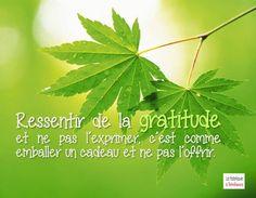 Ressentir de la gratitude et ne pas l'exprimer, c'est comme emballer un cadeau et ne pas l'offrir.
