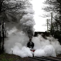 """Trens e Locomotivas by Daniel Alho / Now THAT'S what I call """"shrouded in steam!!"""""""