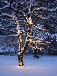 Kuvahaun tulos haulle jouluvalot ulos Christmas Ideas, Snow, Outdoor, Outdoors, The Great Outdoors, Eyes, Let It Snow