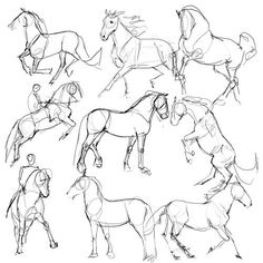 horse drawing tutorial - Google Search