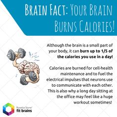Brain Fact: Did you know your brain burns calories? Exercise that brain of yours with Fit Brains games: http://taps.io/fitbrains #health #fact