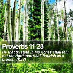 Proverbs 11:28   He that trusteth in his riches shall fall: but the righteous shall flourish as a branch. (KJV)   #Journey #Alpha #Spirit #Inspiration #TrustGod #WordOfLife   http://www.bible-sms.com/