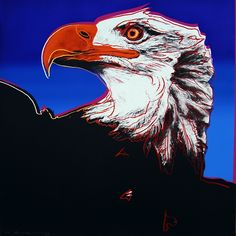 "Andy Warhol : ""Bald Eagle"" from the Endangered Species Portfolio available through ROBIN RILE 