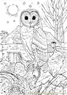 Kids coloring pages | printable coloring sheet, Printable coloring pages for kids with a variety of themes that you can print out and color. Description from kidsfreecoloring.net. I searched for this on bing.com/images