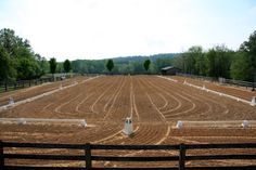 There is just something about a freshly drug arena that makes me so very happy and peaceful