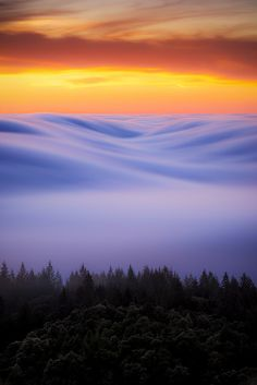 ~~s m o o v e   marin county, California. The Bay Area enveloped in fog with a blazing sunset above    by elmofoto~~