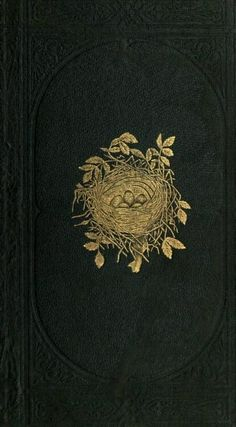 Gold bird nest on cover of 'A Natural History of the Nests and Eggs of British Birds' by Rev. Published 1870 by Bell & Daldy arc. Book Cover Art, Book Cover Design, Book Design, Book Art, Old Books, Antique Books, Historia Natural, Or Noir, Vintage Book Covers