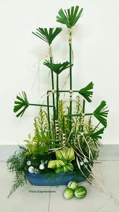 Pin By Boinilima Nilima On Flora Expressions Plants