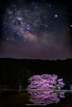 Wish Upon A Galaxy (Japan) by Takahiro Bessho on 500px