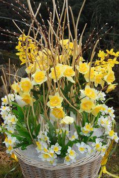 Velký jarní koš - Prodané dekorace - Prodané dekorace - Prodané dekorace - HANA-KYTICE.cz Kos, Plants, Easter Flower Arrangements, Plant, Aries, Planets, Blackbird