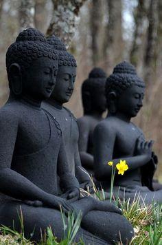 """""""Aquí está el pie de un árbol. He aquí un lugar vacío, tranquilo. Aquí está el verde fresco de la hierba. Hijo mío, ¿por qué no te sientas? Siéntese en posición vertical. Siéntese con solidez. Siéntate en paz."""" ~ Thich Nhat Hanh .."""