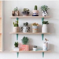 Wishing our shelves looked like this!  Image credi