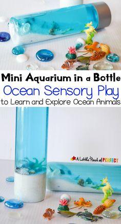 Ocean Aquarium Senso
