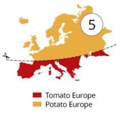 Tomato Europe versus Potato Europe. Also includes Tomato Asia versus Potato Asia.