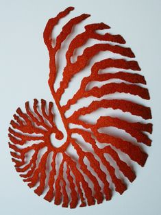 Meredith Woolnough, Red Nautilus