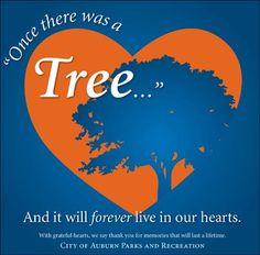 Toomer's Trees