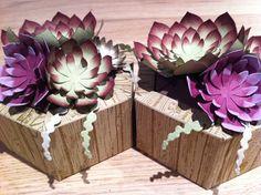 Boite « jardinière » et succulentes Paper Succulents, Framed Art, Stampin Up, Diy Home Decor, Decorative Boxes, Window, Couture, Crochet, Creative Crafts