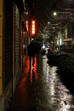 Milano-Rainy Chinatown DP5256 (digital) photo © Ganado Mucho/Marcello Balbi Digital, Cattle