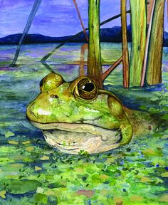Fine Art Print Frog in a Bog by PowellArtAndDesign on Etsy