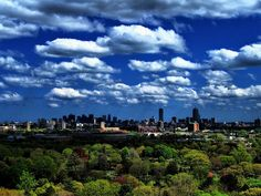 View of Boston from Mt. Auburn Cemetery tower
