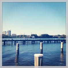 Pelicans @ South Perth