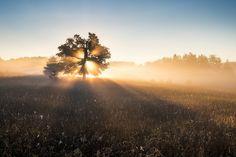 Morning has Broken | Flickr - Photo Sharing!